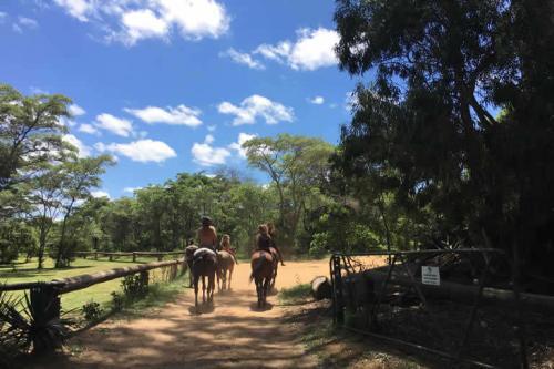 viaggioemozioneacavallo-a-cavallo-nella-savana-16