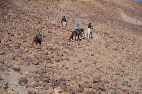 viaggioemozioneacavallo-marocco-chevauchèe-du-dèsert6