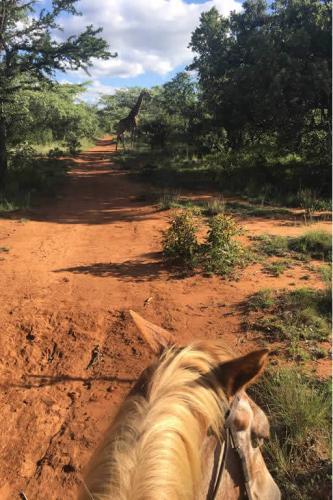 viaggioemozioneacavallo-sud-africa-10