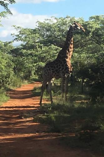 viaggioemozioneacavallo-sud-africa-9