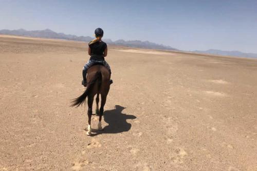 viaggio-emozione-a-cavallo-egitto-come-una-principessa-amazzone-18