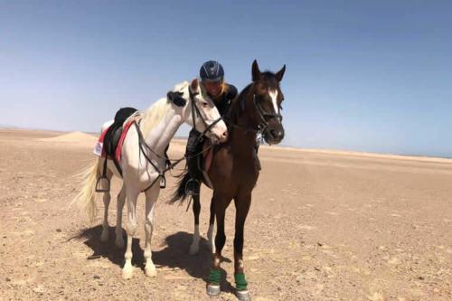 viaggio-emozione-a-cavallo-egitto-come-una-principessa-amazzone-19