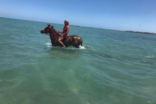 viaggio-emozione-a-cavallo-egitto-come-una-principessa-amazzone-21