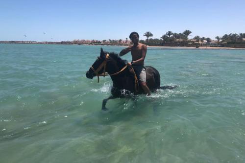 viaggio-emozione-a-cavallo-egitto-come-una-principessa-amazzone-22
