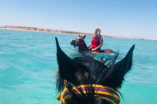 viaggio-emozione-a-cavallo-egitto-come-una-principessa-amazzone-27