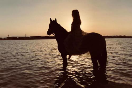 viaggio-emozione-a-cavallo-egitto-come-una-principessa-amazzone-31