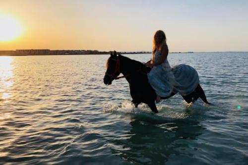 viaggio-emozione-a-cavallo-egitto-come-una-principessa-amazzone-34