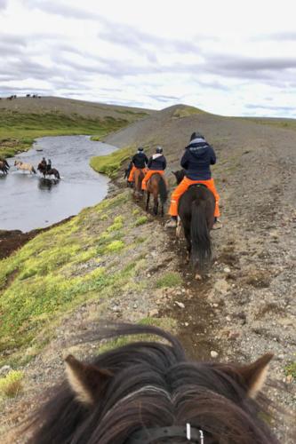 viaggio-emozione-a-cavallo-islanda-la-grande-traversata-kjolur-2-parte-20