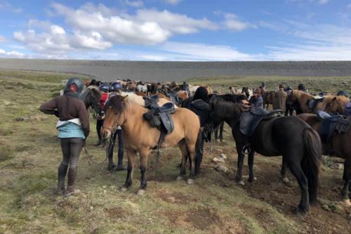 viaggio-emozione-a-cavallo-islanda-la-grande-traversata-kjolur-2-parte-23