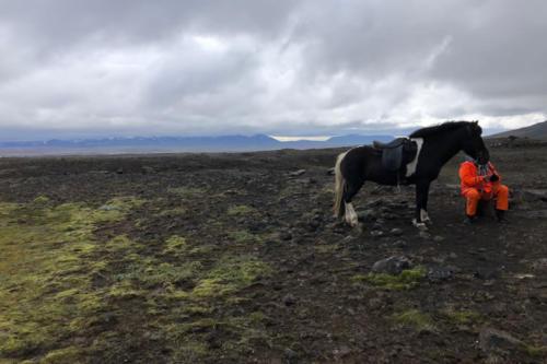 viaggio-emozione-a-cavallo-islanda-la-grande-traversata-kjolur-2-parte-4
